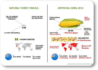 corn evolution 317x229