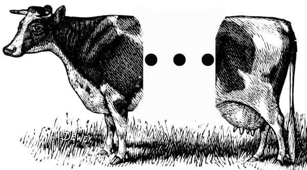 Needless: drawing of a cow split in half with an ellipsis in between parts.