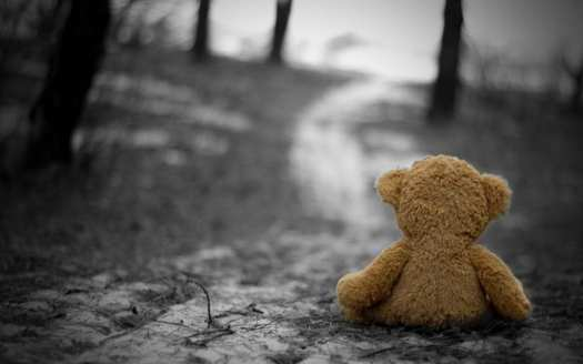 Photo of a teddy bear left behind alone on a forest road.