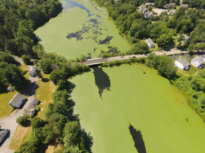 feature-image-blog-multispectural-mapping-aquatic-invasive-species-framingham-ma-nearview
