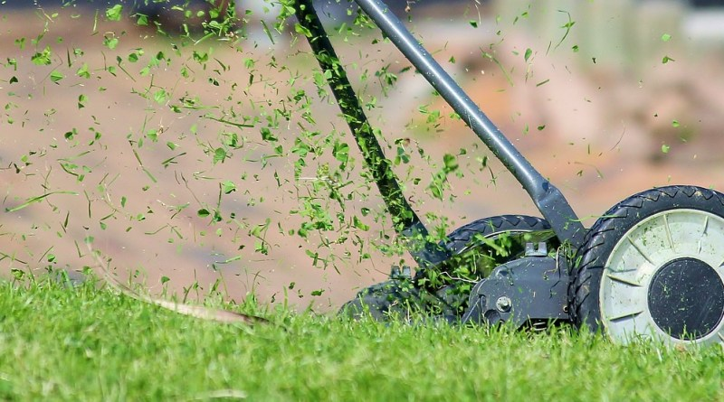 tips for lawn maintenance in spring
