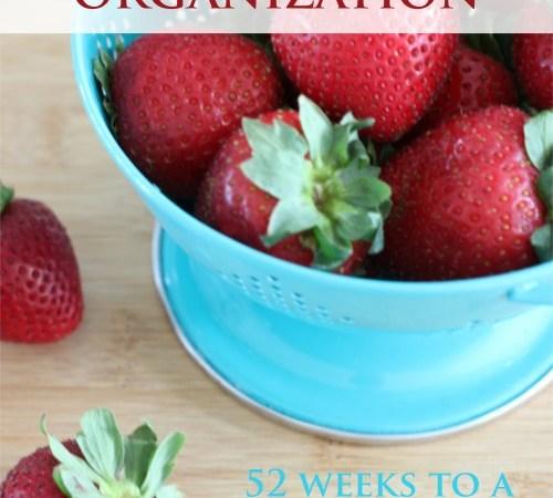 Pantry, Fridge and Freezer Organization – Week 1