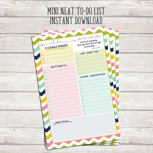 This 5.5 x 8.5 inch to do list is the mini version of our popular Daily Neat To Do List™. It fits perfectly in a mini 3-ring binder, or you can simply drop it in your purse for convenient access to your lists, errands, and reminders when you're on-the-go.