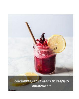  🍃🌿Les feuilles ou fleurs de plantes font de plus en plus partie de notre consommation, généralement en tisane ou jus frais. Il est temps de laisser cours à son imagination et mettre le jus à toutes les sauces. Commençons par la base. >>> 𝗣𝗥𝗘𝗣𝗔𝗥𝗔𝗧𝗜𝗢𝗡 𝗗𝗨 𝗝𝗨𝗦 <<< 1- Méthode 1: laisser infuser plusieurs heurres dans de l'eau 1 journée entière 2- Méthode 2: Faire bouillir la quantité indiquée dans de l'eau. A chaque fois, on peut aromatiser avec de la citronnelle, de la menthe, du citron, de la canelle, etc. Ca dépend de la plante utilisée. 𝑨𝑺𝑻𝑼𝑪𝑬: 𝘯𝘦 𝘫𝘦𝘵𝘦𝘻 𝘱𝘢𝘴 𝘭𝘦𝘴 𝘧𝘦𝘶𝘪𝘭𝘭𝘦𝘴 𝘢𝘱𝘳è𝘴 𝘢𝘷𝘰𝘪𝘳 𝘧𝘪𝘭𝘵𝘳é 𝘭'𝘦𝘢𝘶. 𝘙𝘦𝘧𝘢𝘪𝘵𝘦𝘴 𝘥𝘶 𝘫𝘶𝘴 𝘦𝘯 𝘮𝘦𝘵𝘵𝘢𝘯𝘵 𝘮𝘰𝘪𝘵𝘪é 𝘮𝘰𝘪𝘯𝘴 𝘥'𝘦𝘢𝘶 𝘲𝘶𝘦 𝘭𝘢 𝘱𝘳𝘦𝘮𝘪è𝘳𝘦 𝘧𝘰𝘪𝘴. >>> 𝗖𝗢𝗠𝗠𝗘𝗡𝗧 𝗖𝗢𝗡𝗦𝗢𝗠𝗠𝗘𝗥 𝗟𝗘 𝗝𝗨𝗦 <<< 1- En tisane sucrée ou pas 2- Comme boisson fraiche (seul ou mélangé avec d'autre jus) 3- En granité 4- Dans une glace artisanale maison 5- Dans le smoothie, en remplacant l'eau par le jus de plante 6- Parfumer les gateaux 7- Dans les yaourts maison ✨ 𝘚𝘦𝘭𝘰𝘯 𝘭𝘢 𝘳𝘦𝘤𝘦𝘵𝘵𝘦 𝘥𝘢𝘯𝘴 𝘭𝘢𝘲𝘶𝘦𝘭𝘭𝘦 𝘰𝘯 𝘥é𝘤𝘪𝘥𝘦 𝘥𝘦 𝘭'𝘪𝘯𝘤𝘰𝘳𝘱𝘰𝘳𝘦𝘳, 𝘰𝘯 𝘱𝘦𝘶𝘵 𝘧𝘢𝘪𝘳𝘦 𝘭𝘦 𝘫𝘶𝘴 𝘱𝘭𝘶𝘴 𝘰𝘶 𝘮𝘰𝘪𝘯𝘴 𝘤𝘰𝘯𝘤𝘦𝘯𝘵𝘳é (𝘱𝘭𝘶𝘴 𝘤𝘰𝘯𝘤𝘦𝘯𝘵𝘳é 𝘱𝘰𝘶𝘳 𝘭𝘦 𝘮𝘦𝘵𝘵𝘳𝘦 𝘥𝘢𝘯𝘴 𝘶𝘯 𝘺𝘢𝘰𝘶𝘳𝘵 𝘱𝘢𝘳 𝘦𝘹𝘦𝘮𝘱𝘭𝘦, 𝘦𝘵 𝘱𝘭𝘶𝘴 𝘥𝘪𝘭𝘶é 𝘱𝘰𝘶𝘳 𝘶𝘯 𝘨𝘳𝘢𝘯𝘪𝘵é). ~~~~~~~~ 𝗖𝗼𝗻𝘀𝗼𝗺𝗺𝗲𝘇-𝘃𝗼𝘂𝘀 𝗹𝗲𝘀 𝗳𝗲𝘂𝗶𝗹𝗹𝗲𝘀/𝗳𝗹𝗲𝘂𝗿𝘀 𝗱𝗲 𝗽𝗹𝗮𝗻𝘁𝗲𝘀 ?  👉 Partagez vos recettes si oui. . . #nebiance #jus #jusnaturel #jusmaison #boissonnaturel #boissonfraiche #hibiscus #moringa #kinkeliba #produitnaturel #naturel #zerodechet #ecoresponsable #durabilité #alternative #boissonfraiche #boissons #pausegourmande #detox #boissondetox #eauinfusee #infusion #hydratation #agriculturebiologique #bissap #baobab