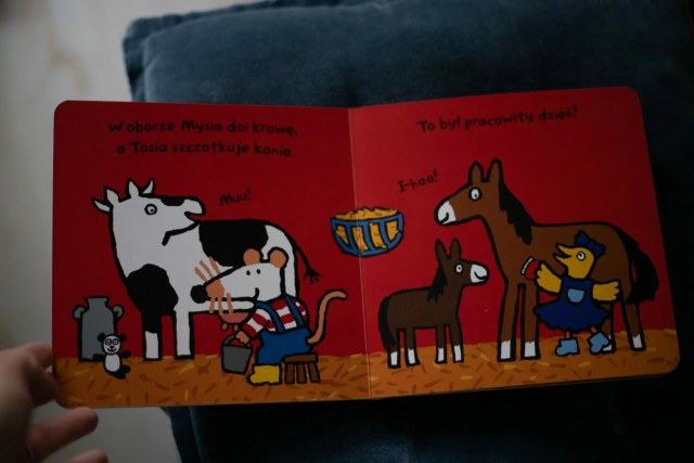 kartonowe książki dla dzieci 0-3
