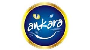 Ankara Logosu