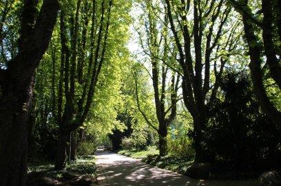 Verlassene Wege im Herzogenriedpark   Foto: Elmar Herding