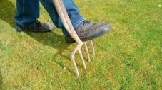 ddealing with soil compaction