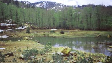 Photo of Liqenet e Kacnisë, një oaz në majë të malit mes Dibrës dhe Matit