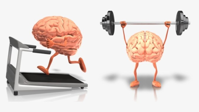 exercise and brain