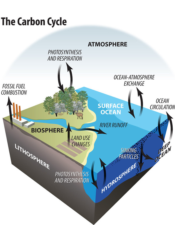 Earth Science diagram