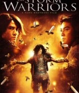 Storm Warriors DVD