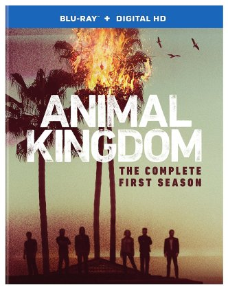 Animal-Kingdom-Season-One-Blu-ray