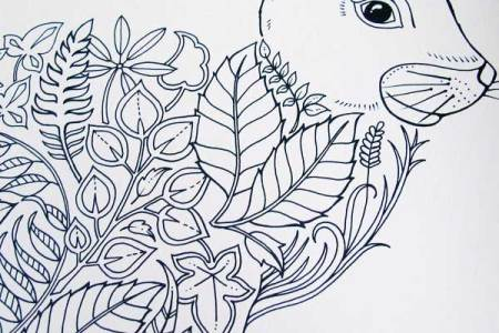 The Enchanted Forest Free Printable Coloring Pages An Inky Quest Book Drawing And