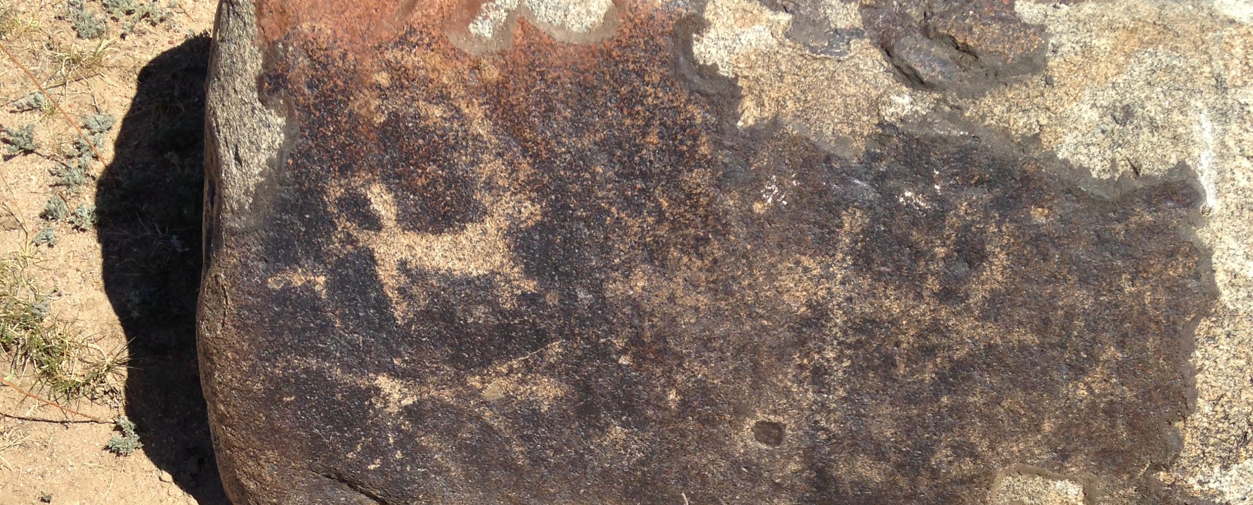 petroglyphs of a four-legged animal