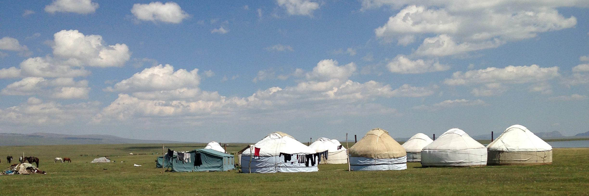 Yurts on green grass