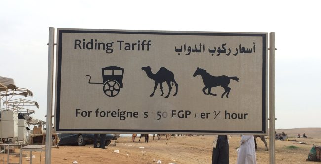 sign advertising costs of camel and carriage rides, because camels make me happy