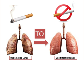 cigarette smoke lungs and clean healthy lungs