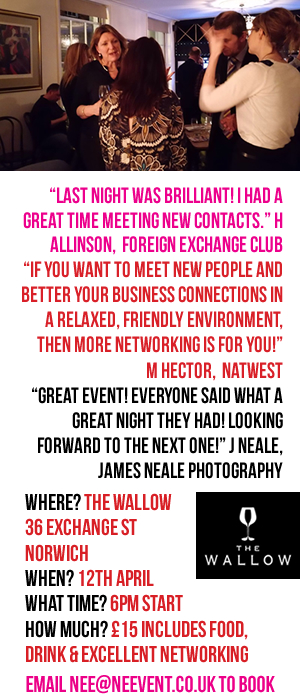 NE Event, MORE Networking, The Wallow, Norwich, business, connections, marketing, April, networking event