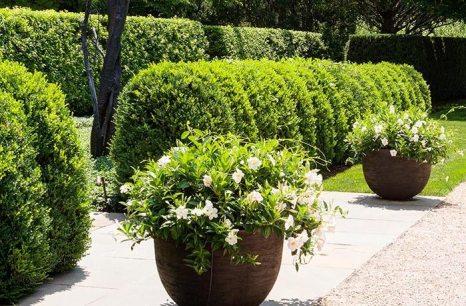 Winston Flowers Garden Design26