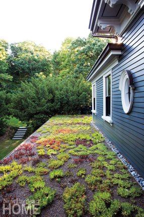 Butz+Klug Architecture loggia green roof