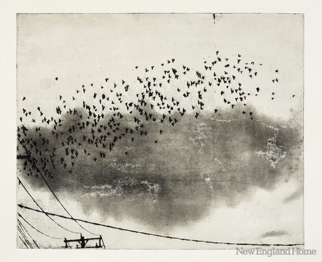 Flock (2011), photo etching with spit bite