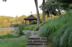 Landscape architect Susan Cohen pergola and grasses
