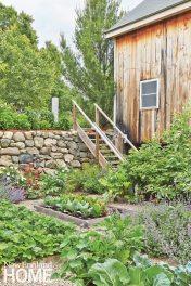 Jim Douthit Vegetable Garden