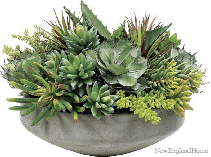 New for spring 2012, a large succulent arrangement in a faux concrete bowl.