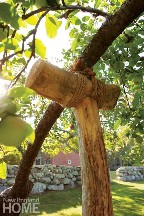 A tree crutch, a century-old technique to brace a tree limb, supports an old apple tree that lost a limb in a storm.