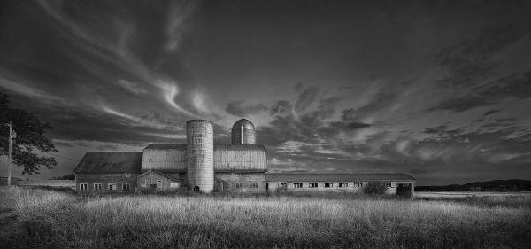 Jim Westphalen Bridport Farm 1