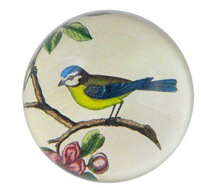 john derian bird plate