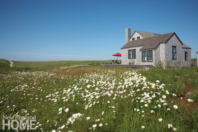 Contemporary on Nantucket   New England Home Magazine Nantucket home in a meadow