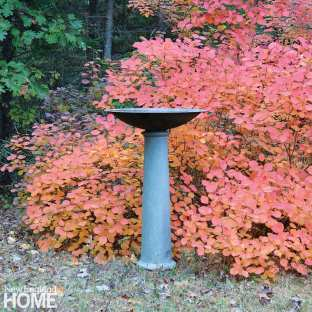 A gray bird bath with red fall foliage in the background.