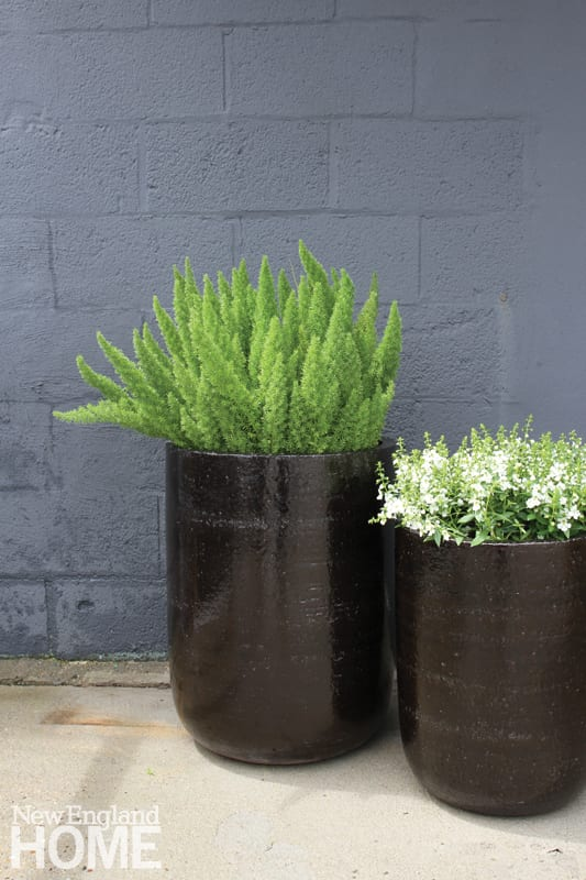 Two black pots potted with green plants. There's a brick wall that has been painted gray in the background.