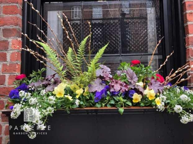 beautiful garden year long beacon hill boxes