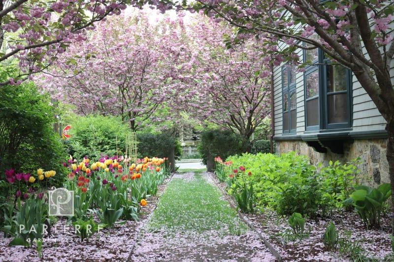 beautiful garden all year long arbor tulips walkway