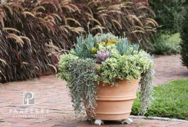 beautiful garden year long pots