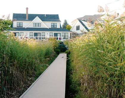 An Oceanfront Landscape Design in Maine