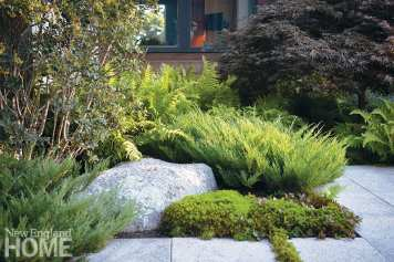 A mix of plantings in a Maine garden.