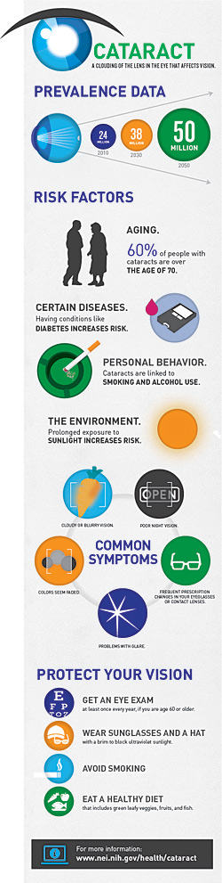 Cataract Infographic Preview