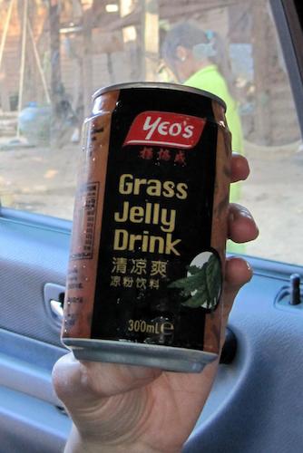 grass jelly soft drink