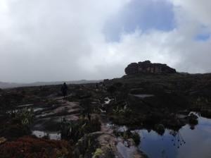 Walk through Roraima