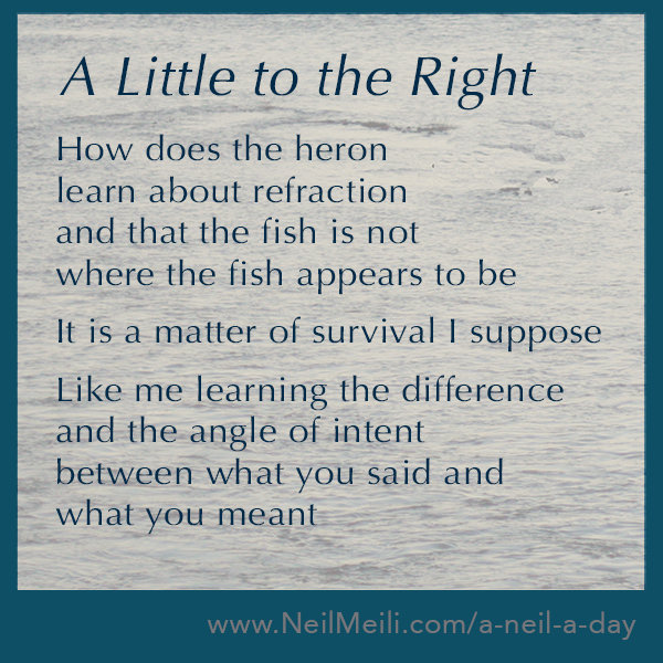 How does the heron learn about refraction and that the fish is not where the fish appears to be  It is a matter of survival I suppose  Like me learning the difference and the angle of intent between what you said and what you meant