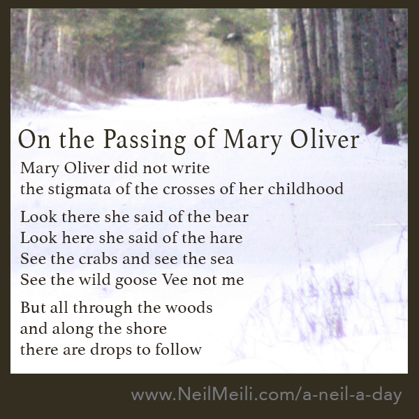 Mary Oliver did not write the stigmata of the crosses of her childhood  Look there she said of the bear Look here she said of the hare See the crabs and see the sea See the wild goose Vee not me  But all through the woods and along the shore there are drops to follow