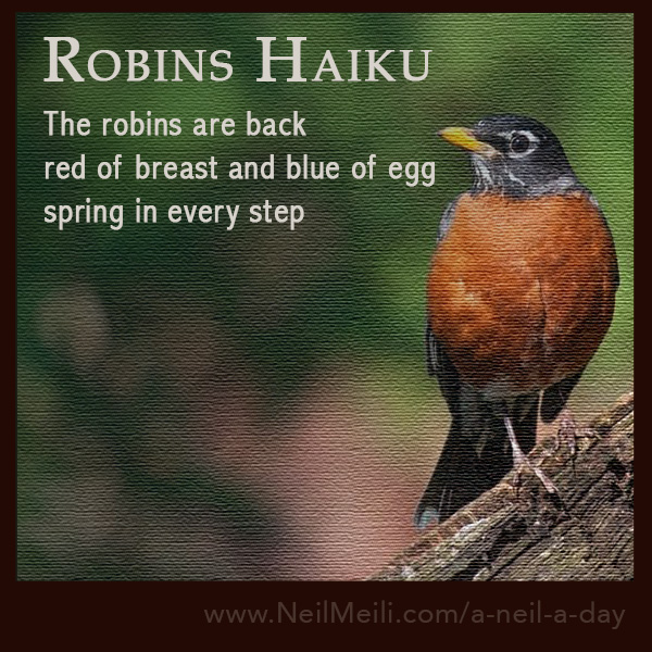 The robins are back  red of breast and blue of egg spring in every step