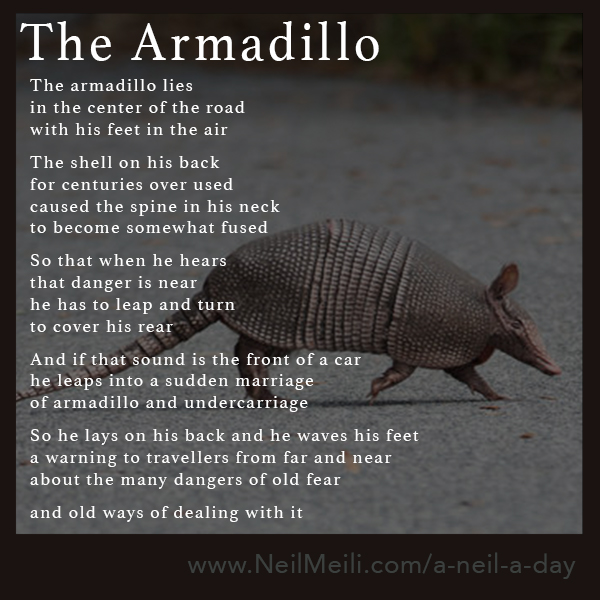 The armadillo lies in the center of the road with his feet in the air  The shell on his back for centuries over used caused the spine in his neck to become somewhat fused  So that when he hears that danger is near he has to leap and turn to cover his rear  And if that sound is the front of a car he leaps into a sudden marriage of armadillo and undercarriage  So he lays on his back and he waves his feet a warning to travellers from far and near about the many dangers of old fear  and old ways of dealing with it