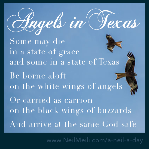 Some may die in a state of grace and some in a state of Texas  Be borne aloft on the white wings of angels  Or carried as carrion on the black wings of buzzards  And arrive at the same God safe