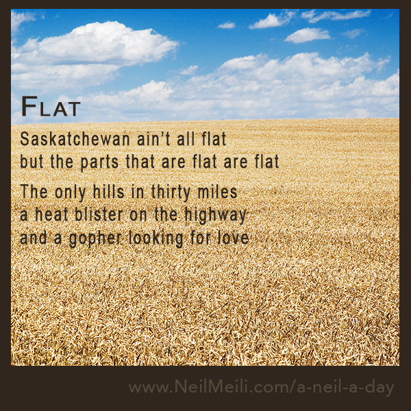 Saskatchewan ain't all flat but the parts that are flat are flat  The only hills in thirty miles a heat blister on the highway and a gopher looking for love
