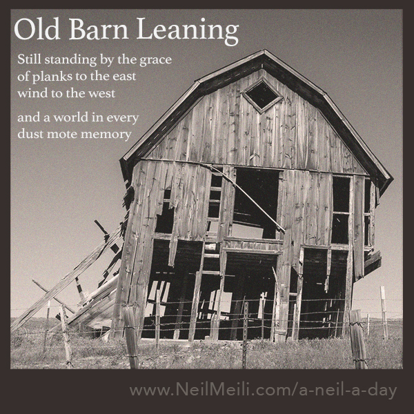 Still standing by the grace of planks to the east  wind to the west  and a world in every  dust mote memory